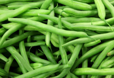 Dallas ISD Food Services Harvest of the Month - Green Beans