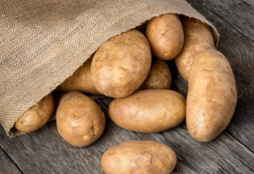 Dallas ISD Food Services Harvest of the Month - Russet Potatoes