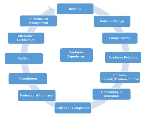Human Capital Management  Human Capital Management
