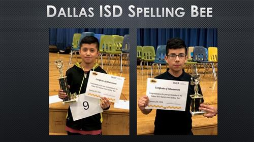 Spelling Bee Champ