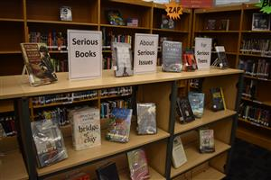 Library Displays