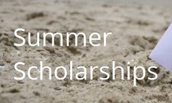 PTSA Summer Scholarships