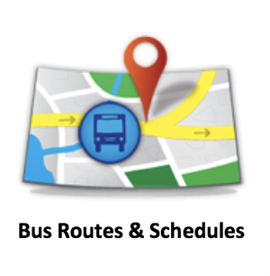 Bus Routes & Schedules